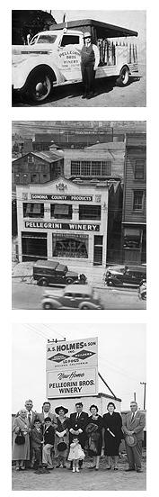 Pellegrini_History